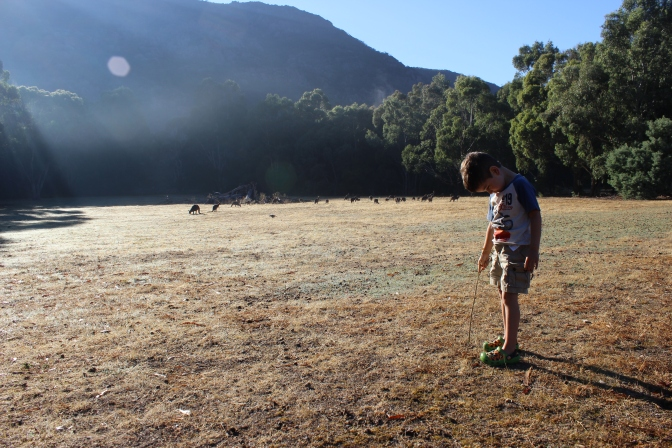 Solitude: To Halls Gap and back